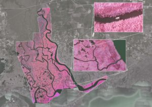 Infrared of Pearl River mapped by Altavian drone