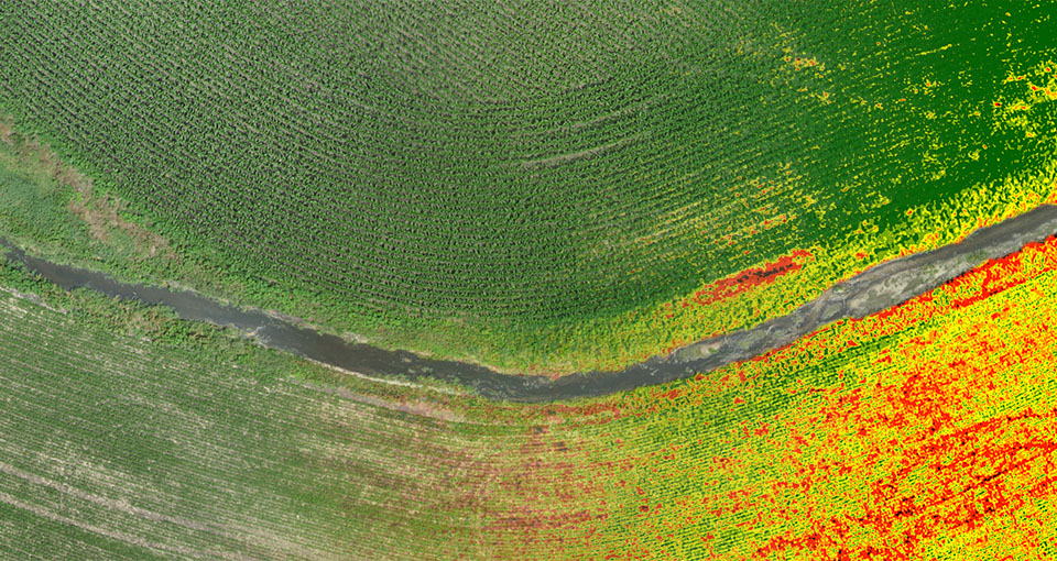 ndvi count
