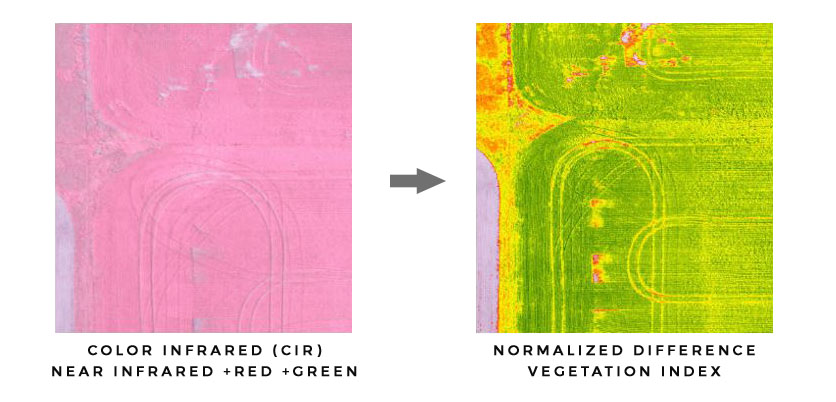 color infrared (cir) compared to normalized difference vegetation index