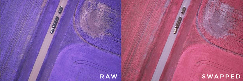 swapping the Red and NIR color channels, similar to Kodak Aerochrome